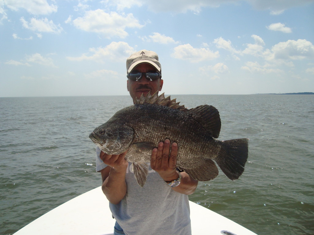 St simons island inshore fishing charters for St simons island fishing report