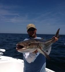Cobia Fishing St. Simons Island