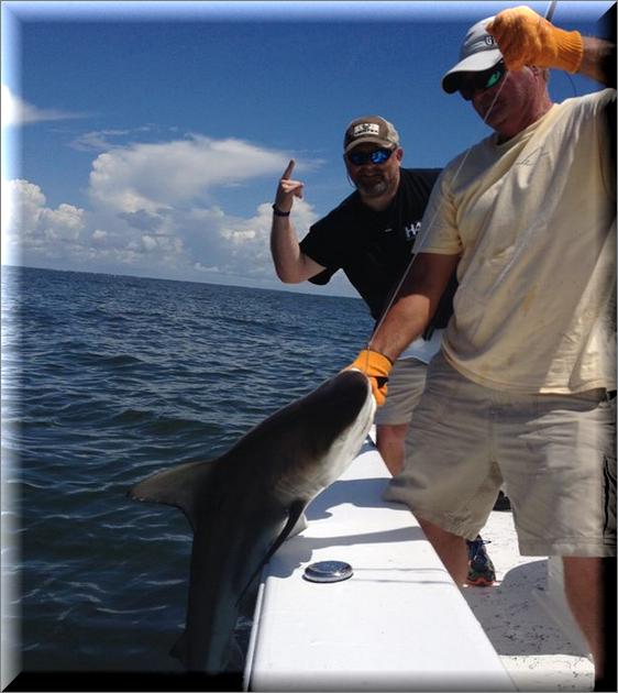 Georgia Shark Fishing