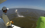 georgia tarpon fishing guide