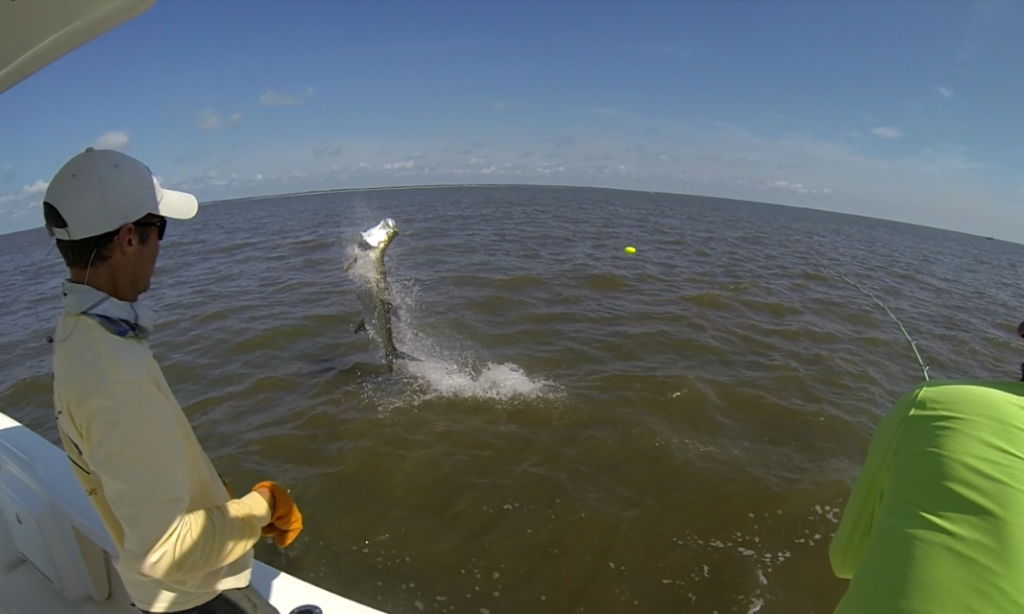 Fishing in island 100 images blue horizon fly fishing for St simons island fishing report