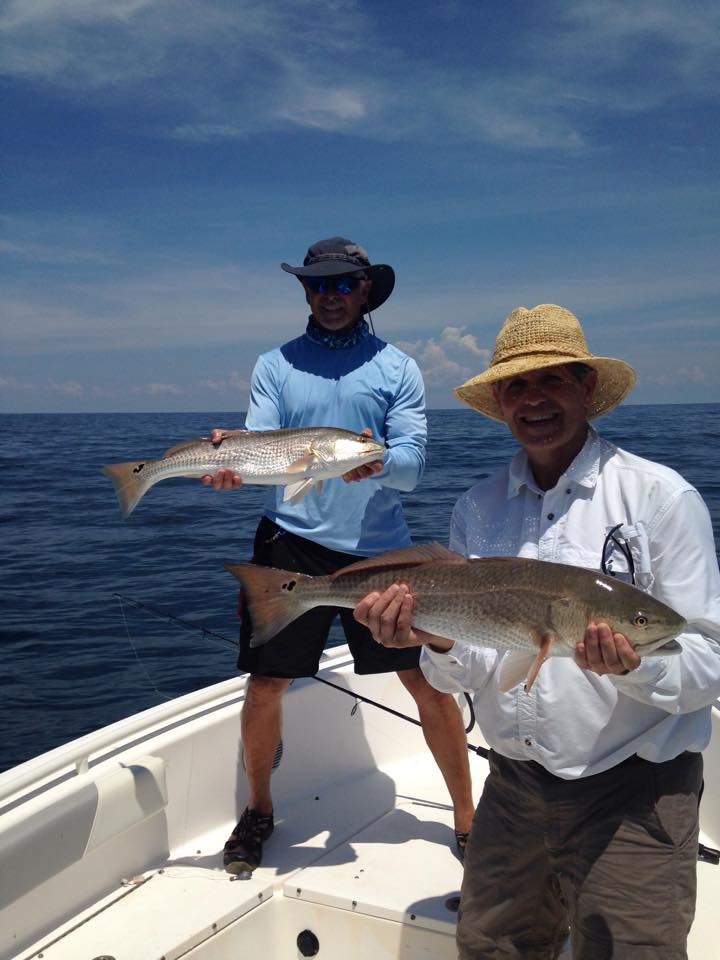 savannah fishing report ga