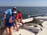 georgia shark fishing charters
