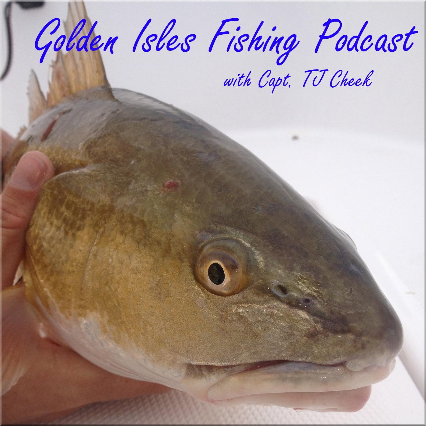 Fishing report for St. Simons Island, Jekyll Island, Brunswick, GA